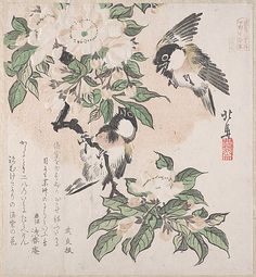 Teisai Hokuba (Japanese, 1771–1844). Spring Rain Collection (Harusame shū), vol. 3: Marsh-tits and Crab Apple Flowers, ca. 1820. The Metropolitan Museum of Art, New York. H. O. Havemeyer Collection, Bequest of Mrs. H. O. Havemeyer, 1929 (JP2363) #spring