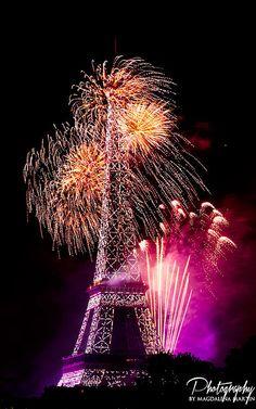 Fireworks Bastille Day, Paris France 2014