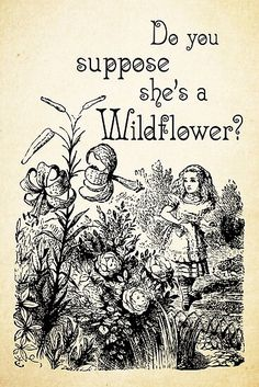 18 Trendy Quotes Alice In Wonderland Wildflower Alice In Wonderland Flowers, Alice And Wonderland Tattoos, Alice In Wonderland Printables, Alice In Wonderland Bedroom, Wild Flower Quotes, Go Ask Alice, Wildflower Tattoo, Through The Looking Glass, Happy Thoughts
