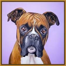 Resultado de imagen para imagenes de perros boxer para colorear