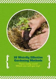 10 Weird Gardening Methods that Work!