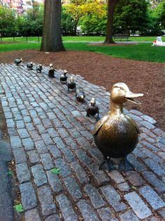 It's a Boston must-see: Make Way For Ducklings in the Public Garden
