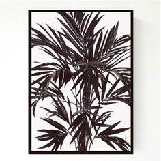 A4 - Palm Tree • LIVINK • Tictail