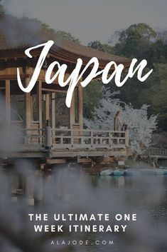 Only have one week in Japan? This tried and tested itinerary will make sure you maximise your 7 days in Japan. Visit Tokyo, Visit Japan, Japan Travel Guide, Asia Travel, Spain Travel, Thailand Travel, Travel Advice, Travel Guides, Travel Hacks