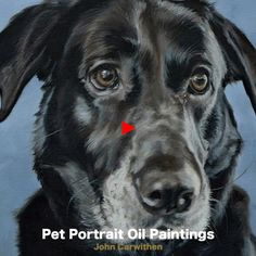 Black Labrador portrait oil painting on canvas - Vilhelmina Pycock Black Labs Dogs, Black Labrador, Dog Canvas Painting, Animal Paintings, Dog Portraits, Dog Art, Labradors, Black Canvas, Personality