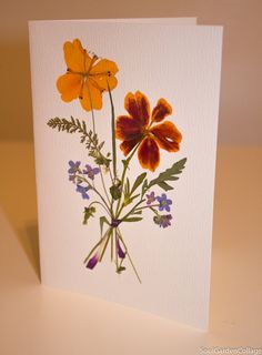 Unique greeting card A6 Handmade OOAK pressed flowers dried flowers Cloves Forget me not herbarium botanical Floral art Birthday card