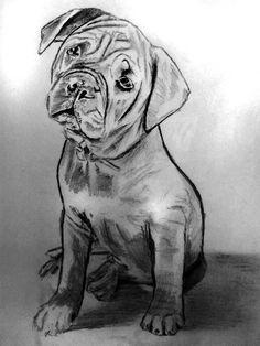 Doggie in Pencil