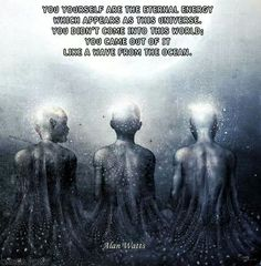Quantum Physics / you didn't come into this world. You came from it.
