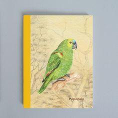 Sketchbook Papagaio - ArteDG2