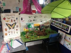 Mini beast investigation - like all the visual information. Spring Activities, Creative Activities, Investigation Area, Investigations, Minibeasts Eyfs, Role Play Areas, Small World Play, Play Based Learning, Play Centre