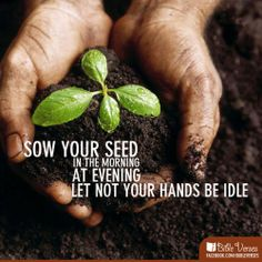15 January 2014 - Even when there seems to be nothing to do, there is always something to be done.  Ecc 6:10 Sow your seed in the morning, and at evening let your hands not be idle, for you do not know which will succeed, whether this or that, or whether both will do equally well.
