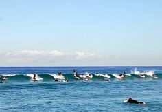 My Photo of Bondi Surfers  http://blog.travelpod.com/members/roseyd