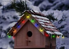 Birdhouse w/Lights by nowhiners  |  Photobucket