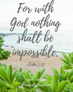 "0 Likes, 1 Comments - Socorro Martinez (@socorro4763) on Instagram: """"For nothing will be impossible with God."" ~Luke 1:37"""