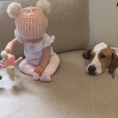 Dog❤️  (Click to view video)