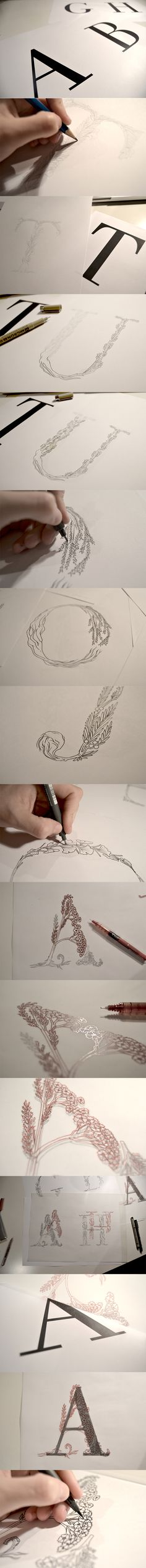HERBARIUM TYPOGRAPHY by Ana Bangueses, via Behance