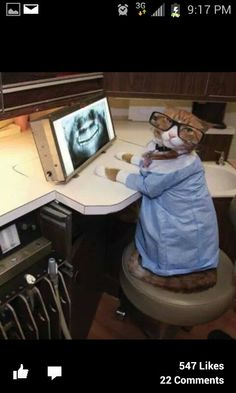 Kitty Dentist! www.dentalcapecod.com www.facebook.com/DAOCC Tweet: @Dental Associates of Cape Cod