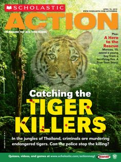 """Catching the Tiger Killers"" is a Grades 7-12 Cover finalist from Scholastic Action. This issue is the April 15, 2013 edition of the magazine."