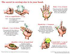 Medidas equivalentes con la palma de tu mano