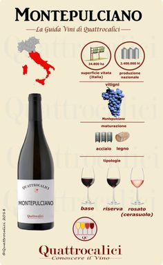 If you want quality grape, Conversational italian bottles of wine are definitely most of the to contemplate Wine Chart, Chateauneuf Du Pape, Pinot Noir Wine, Wine Education, Wine News, Wine Guide, Italian Wine, In Vino Veritas, Wine And Beer