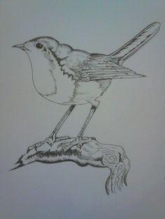 bird by Mio299.deviantart.com on @deviantART