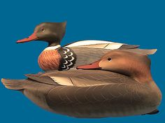 This domain may be for sale! Duck Decoys For Sale, Waterfowl Hunting, Hunting Gear, Decoy Carving, Hunting Supplies, Wooden Walking Sticks, Shorebirds, Wood Art, Sculptures