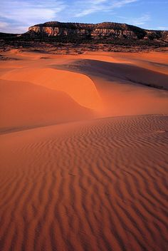 Coral Pink Sand Dunes State Park in Kanab, Utah, sees little more than 50,000 visitors each year, offering a respite from more trafficked red rock destinations. The park provides access to a perfect combination of solitude and sand.