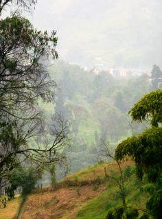 Manizales, paisaje nublado.
