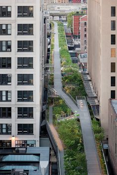 High Line Park is an innovative green space in New York City: an abandoned railroad becomes a park.