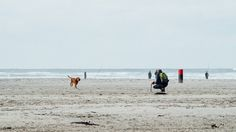 #lifesabeach #beach #dog #people #terschelling #vscofilm #vsco #vscogrid #beachlovers #igersholland #contemporaryphotography #vscoexpo #moody #instadaily #documentaryphotography #sea #contemporaryart #contemporary #nature #vscoedit #vscodaily #Loves_Netherlands #nothingisordinary_ #dutch_connextion #igfriends_valledaosta #wanderlust #vscocam #monolith_europe