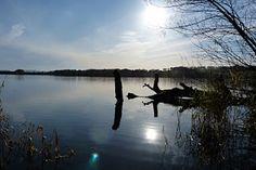 Drumellie Loch, by Blairgowrie, Scotland
