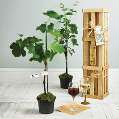 Grapevine Gift Crate - view all gifts for him