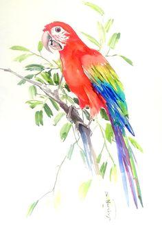 Vert Winged Macaw perroquet art original aquarelle par ORIGINALONLY