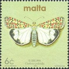 Sello: Crimson-speckled Flunkey (Utetheisa pulchella) (Malta) (Moths and Butterflies) Mi:MT Malta, Butterflies, Insects, Stamps, Seals, Butterfly, Bowties, Postage Stamps, Bugs