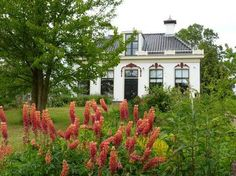 't Kastieltsje, Bed and Breakfast in Sexbierum, Friesland, Nederland | My great grandparents home!