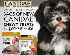 Canidae is giving you the chance to win some chewy treats for your furry friends. They will be awarding 1,000 instant winners with a FREE bag of the NEW Canidae Chewy Treats. Nothing makes my …