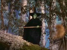 The Wizard of Oz - Wicked Witch of the West Wizard Of Oz Witch, Wizard Of Oz 1939, Wicked Witch, Rainbow Sky, Over The Rainbow, Wizard Of Oz Quotes, Halloween Gif, My Fantasy World, Land Of Oz