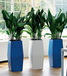 Try using simple, matching foliage and colour co-ordinated pots for a sleek look and splash of colour. These potted plants add height which adds a stylish element.