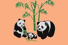 Pandas, Animals, Vector Graphic
