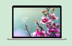 Secret Garden Website on Behance