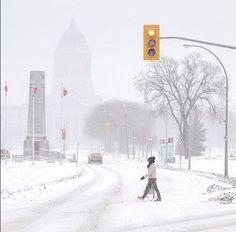 Winter in Winnipeg Pin Boards, Canadian Winter, Red River, Winter Scenes, Elizabeth Ii, Winter Wonderland, Ontario, Vancouver