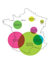 France is currently the second-largest wine-producing country on Earth (after Italy), creating more than six billion bottles, on average, each year.   Languedoc-Roussillon 528,000 Acres ·  Bordeaux 306,000 Acres · Rhône Valley 188,700 Acres · Loire Valley 158,000 Acres · Burgundy 125,000 Acres · Champagne 75,000 Acres · Alsace 34,000 Acres