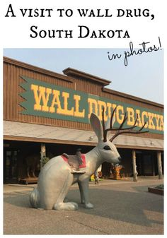 Ready to see Wall Drug in pictures? This road side stop defies explanation!