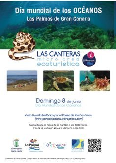 Cartel visita histórica, Playa de Las Canteras 2014