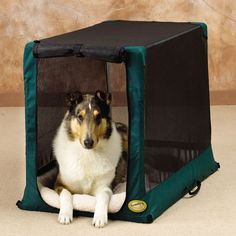 General Cage It'z A Breeze Too Soft-Sided Dog Crate - Green