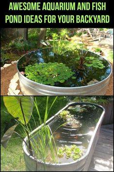 DIY Indoor Aquaponics Fish Tank Ideas 30