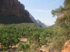 Park Family Insurance > Blog Zion National Park