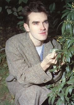 plant boy morrissey
