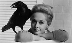Tippi Hedren, star of Alfred Hitchcock's The Birds, poses with Ronald, one of the hundreds of trained ravens that were used in the film.