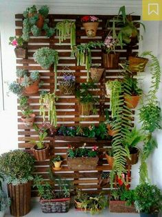 um up na decoração: faça um jardim vertical Garden wall, how cool would this be for outside an entry way, or even on a fence?Garden wall, how cool would this be for outside an entry way, or even on a fence?